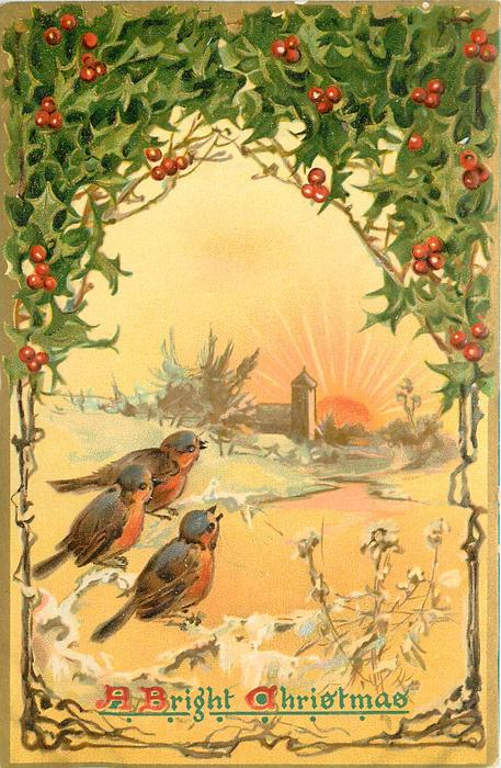 A BRIGHT CHRISTMAS  three robins look at sunrise, snowy river scene, holly above